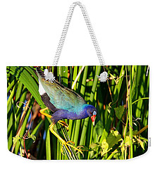 Purple Gallinule Weekender Tote Bag