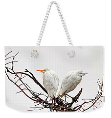 A Basket Of Anger Weekender Tote Bag by Cyndy Doty