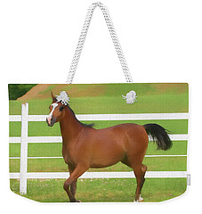 A Beautiful Arabian Filly In The Pasture. Weekender Tote Bag