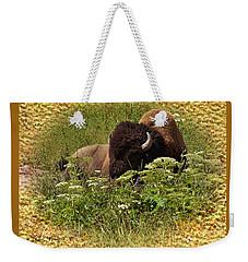 A Bison At Rest Weekender Tote Bag by Kae Cheatham