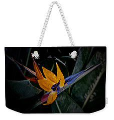 A Bright Blooming Bird Weekender Tote Bag