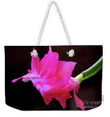 Weekender Tote Bag featuring the photograph A Cactus Flower by Victor K