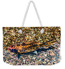 A Captive Koi Weekender Tote Bag by Stan  Magnan