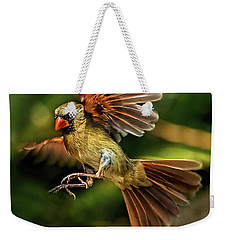 A Cardinal Approaches Weekender Tote Bag