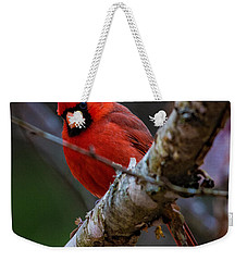 A Cardinal In Spring   Weekender Tote Bag