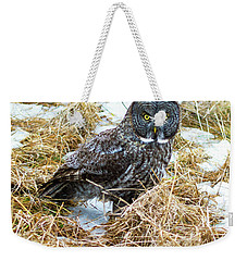 A Close Encounter - Great Gray Owl Weekender Tote Bag