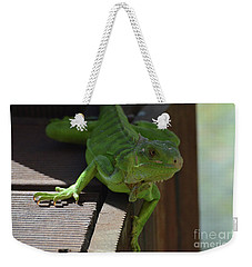 A Close Look At A Green Iguana Weekender Tote Bag by DejaVu Designs