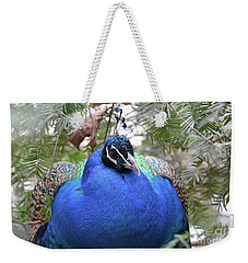 A Close Up Look At A Blue Peafowl Weekender Tote Bag by DejaVu Designs