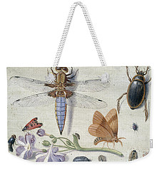 A Cockchafer, Beetle, Woodlice And Other Insects, With A Sprig Of Auricula Weekender Tote Bag