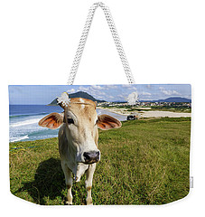 A Cow At The Beach Weekender Tote Bag