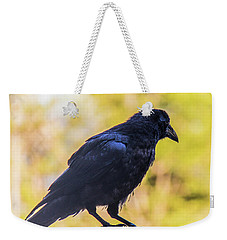 Weekender Tote Bag featuring the photograph A Crow Looks Away by Jonny D