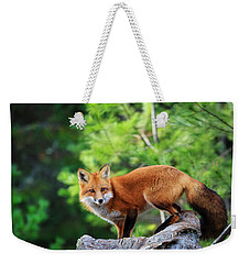 A Cunning Hunter Weekender Tote Bag