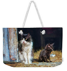 A Day In The Life Of A Barn Cat Weekender Tote Bag