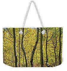 Weekender Tote Bag featuring the photograph A Day In The Woods by Scott Read