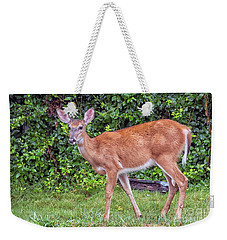A Deer Young Lady Weekender Tote Bag