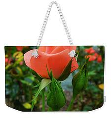 A Delicate Pink Rose Weekender Tote Bag