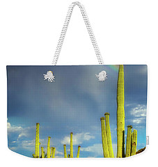 Weekender Tote Bag featuring the photograph A Divine Touch by Rick Furmanek