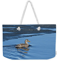 Weekender Tote Bag featuring the photograph A Female Mallard In Thunder Bay by Michael Peychich