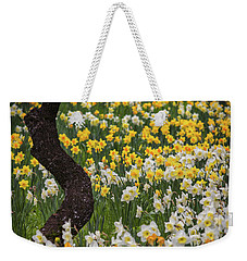 A Field Of Daffodils Weekender Tote Bag by Mitch Shindelbower