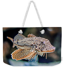 A Fishy Photo Weekender Tote Bag by Rob Sellers