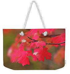 A Flash Of Autumn Weekender Tote Bag
