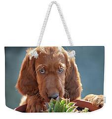 A Gardener Weekender Tote Bag
