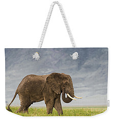 Weekender Tote Bag featuring the photograph A Gentle Giant by Sandra Bronstein