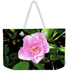 A Gentle Rose Weekender Tote Bag