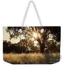 Weekender Tote Bag featuring the photograph A Golden Afternoon by Linda Lees