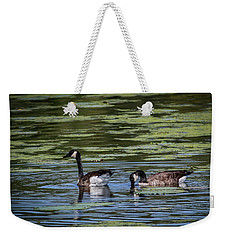 A Goose Ducks In Water Weekender Tote Bag by Ray Congrove