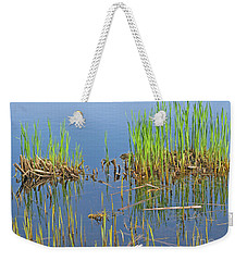 Weekender Tote Bag featuring the photograph A Greening Marshland by Ann Horn