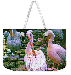 a group of swans near the pond on a Sunny summer day Weekender Tote Bag