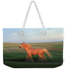A Horse At Sandal Ranch Near Howes Weekender Tote Bag