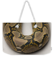 A Juvenile Reticulated Python Weekender Tote Bag