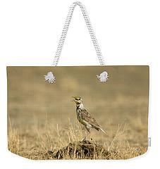 A Juvenile Western Meadowlark Weekender Tote Bag