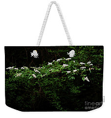 Weekender Tote Bag featuring the photograph A Light In The Darkness by Skip Willits