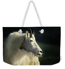 A Little Slip Of The Tongue Weekender Tote Bag
