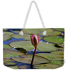Weekender Tote Bag featuring the photograph A Lonely Vigil by Michiale Schneider