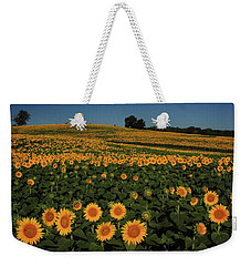 Weekender Tote Bag featuring the photograph A Lot Of Birdseed  by Chris Berry