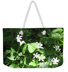 Weekender Tote Bag featuring the photograph A Lovely Spot For Shamrocks by Nancy Lee Moran