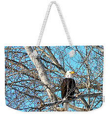 Weekender Tote Bag featuring the photograph A Majestic Bald Eagle by Will Borden