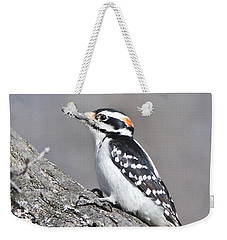 Weekender Tote Bag featuring the photograph A Male Downey Woodpecker 1120 by Michael Peychich