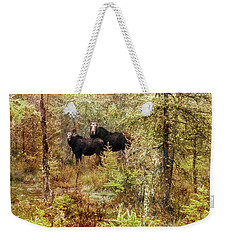 A Mother And Calf Moose. Weekender Tote Bag