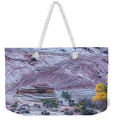 Weekender Tote Bag featuring the photograph A Natural Abstract by John M Bailey