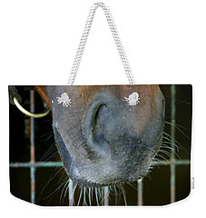 a Nose Knows Weekender Tote Bag by Cathy Harper