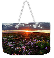 Weekender Tote Bag featuring the photograph A Nuttalls Linanthastrum Morning by Leland D Howard