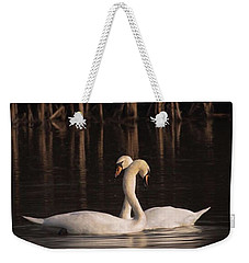 A Painting Of A Pair Of Mute Swans Weekender Tote Bag by John Edwards