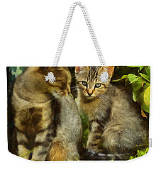 A Pair Of Feral Cats Weekender Tote Bag