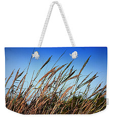 Weekender Tote Bag featuring the photograph A Picture Worth A Thousand Words by Debra Forand