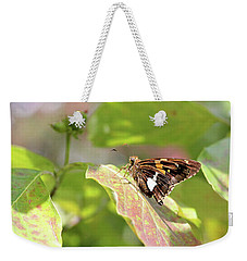 Weekender Tote Bag featuring the photograph A Place Of Rest by Trina Ansel